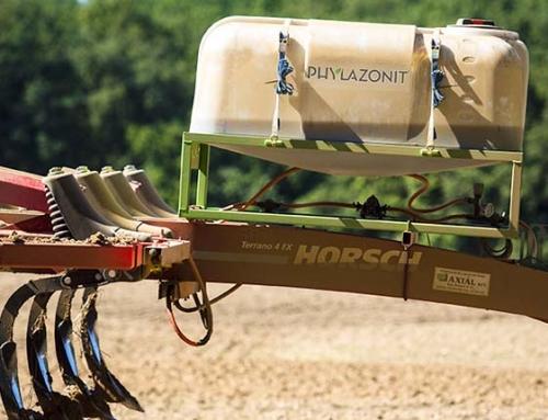 Phylazonit tarlóbontás megfelelő agrotechnikával