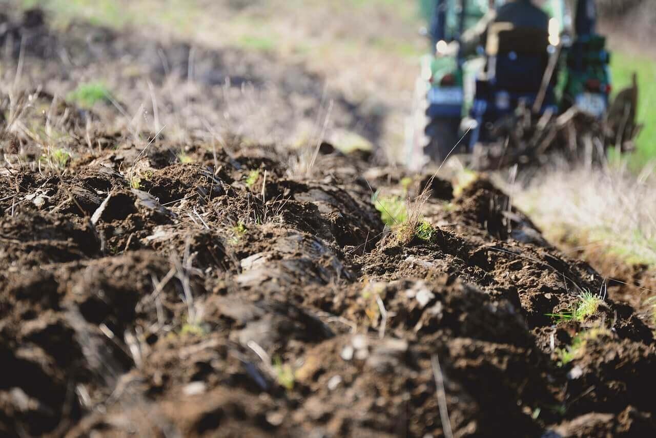 Forgatás nélküli talajművelés