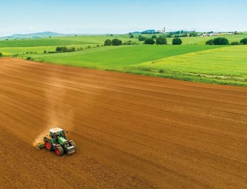 Intenzív talajélet nélkül nincs hatékony növénytermesztés