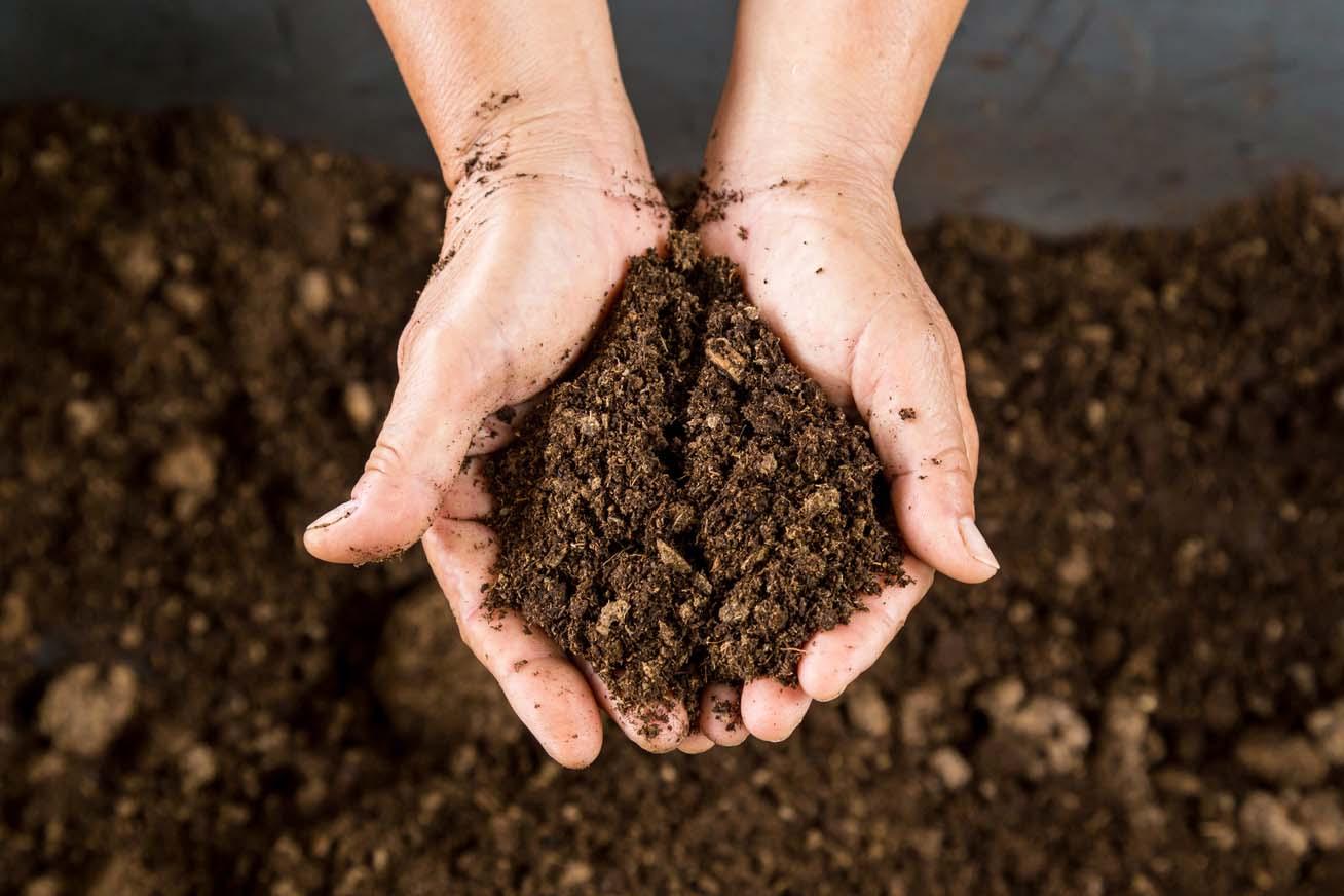 Valami ijesztő történik a talajjal, ami fokozhatja a klímaváltozás hatásait
