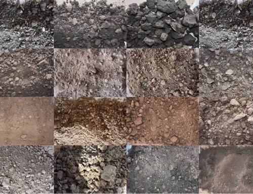 Mit adnak nekünk a talajbaktériumok?