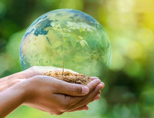 Előremutató növénytermesztés a talajélet helyreállításával!