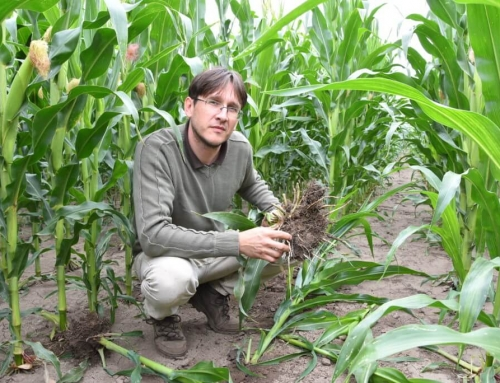 A Phylazonit szívügye a termőföld, ez hajtja előre őket a mikrobiológiai készítmények piacán is!